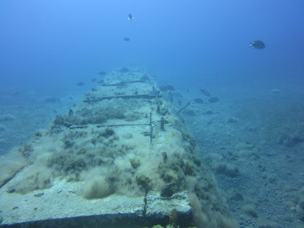 diving-tenerife-Las-Eras-The-Pipeline