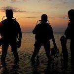 night diving tenerife